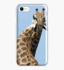 WHEN GIANTS COLLIDE - GIRAFFE – Giraffa Camelopardalis (KAMEELPERD) iPhone Case/Skin