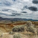 Painted Hills by Richard Bozarth