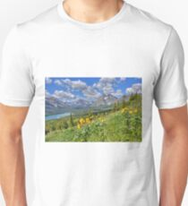 Two Medicine Valley T-Shirt