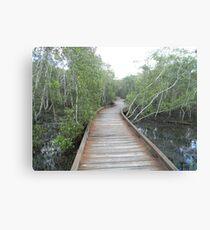 Mangrove BoardWalk - Coombabah Lakelands Canvas Print