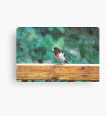 Fledgling Rose-Breasted Grossbeak Canvas Print