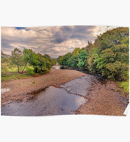 River Swale in Autumn Poster