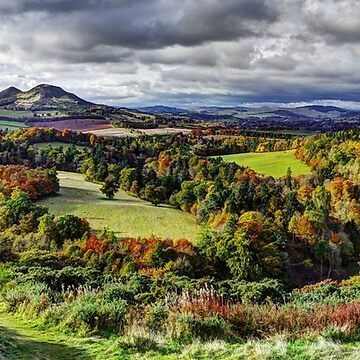 Autumn on Tweed by Ranald