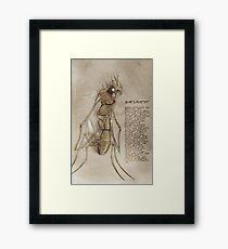 Nariscine Framed Print