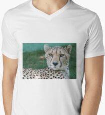 leopard at the zoo Men's V-Neck T-Shirt