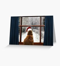 Leo and so much snow! Greeting Card