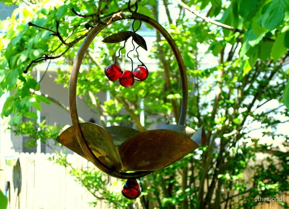 Backyard Bird Feeder - Spring by ctheworld
