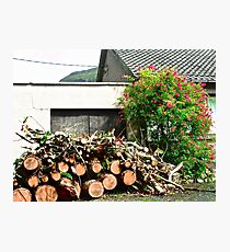 Logs'n Roses, Sligo, Donegal, Ireland Photographic Print