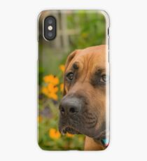 Sometimes you just gotta Stop, Smell and Eat the Flowers iPhone Case/Skin
