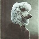 Poodle by womoomow