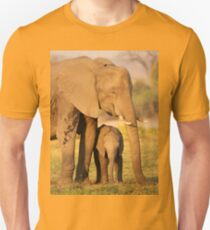 A Mother's Protection Unisex T-Shirt