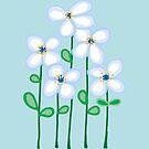 Blue daisies by goanna