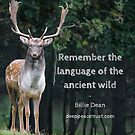 Remember The Language  by Deep Peace Trust