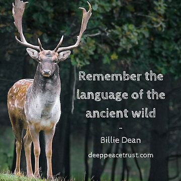 Remember The Language  by Deeppeacetrust
