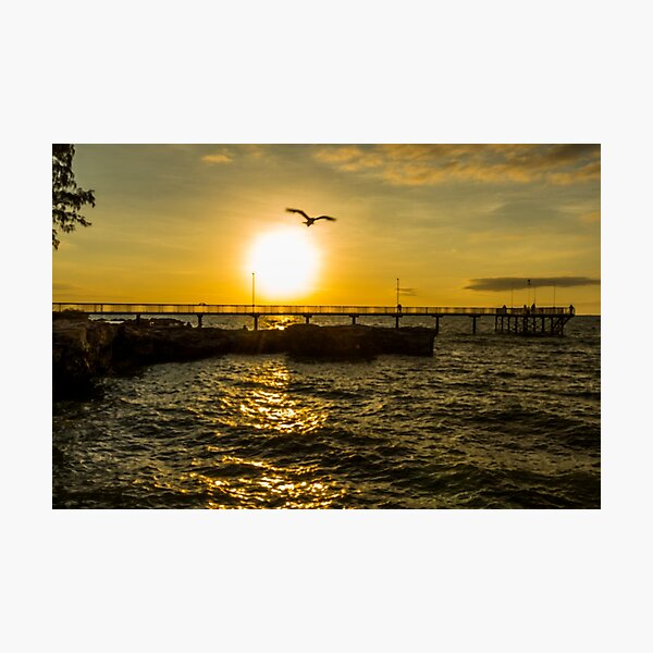 Fly off into the sunset Photographic Print