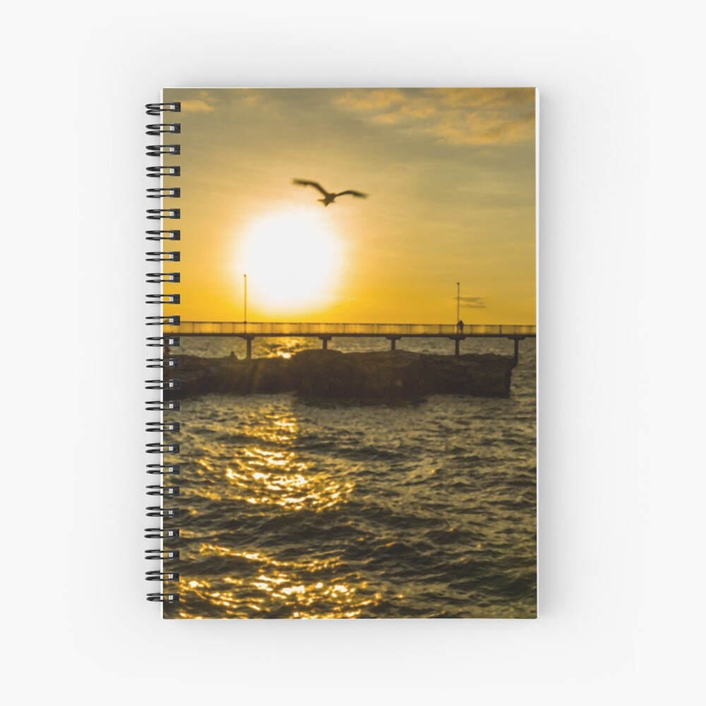 Fly off into the sunset Spiral Notebook