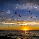 Aldinga Sunset by Barb Leopold