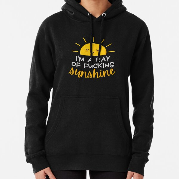 I'm a ray of fucking sunshine ..v Pullover Hoodie