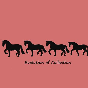 Evolution of collection by Equinspire