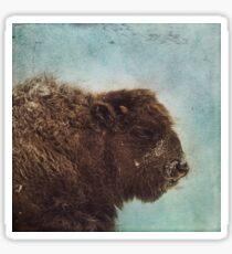 Wood Buffalo Sticker
