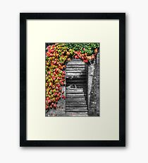 Stairway with autumn leaves Framed Print