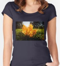 Autumn color maple leaf on grass Women's Fitted Scoop T-Shirt