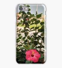 A Flower Amidst Destruction iPhone Case/Skin