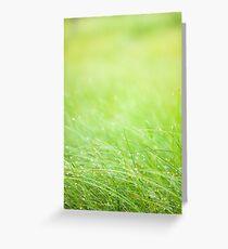 Wet grass Greeting Card