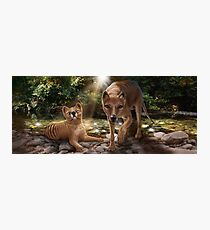Tasmanian tigers (Thylacines) mother & pup Photographic Print