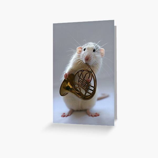 French horn. Greeting Card