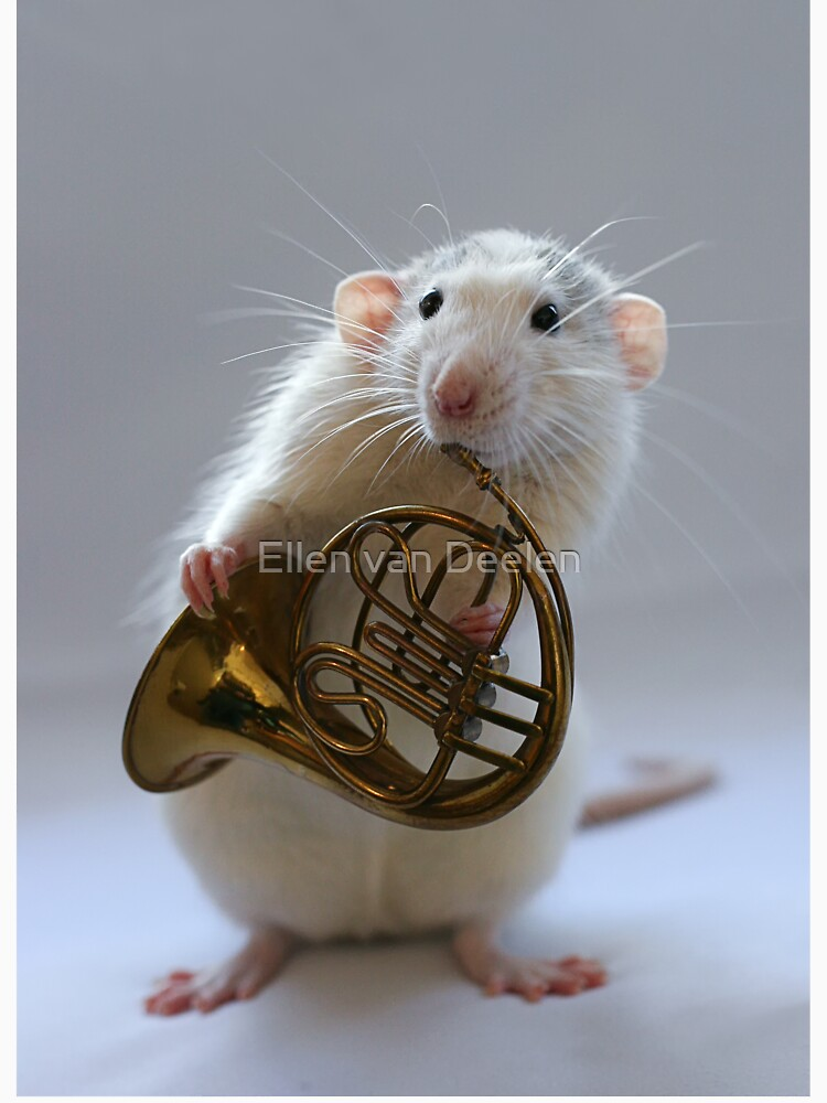French horn. by Ellen
