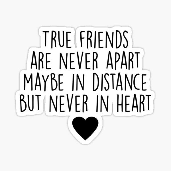 Wahre Freunde sind niemals getrennt Sticker