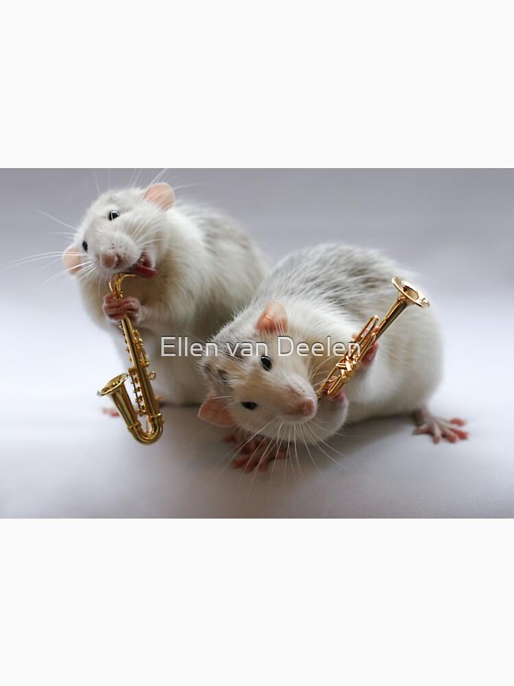 Same Band.... by Ellen