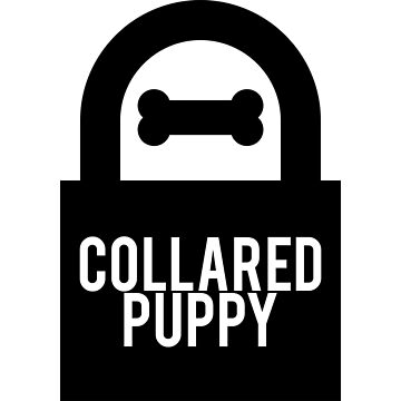 Collared Puppy by kinkytees