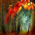 Autumn Sight by Igor Zenin