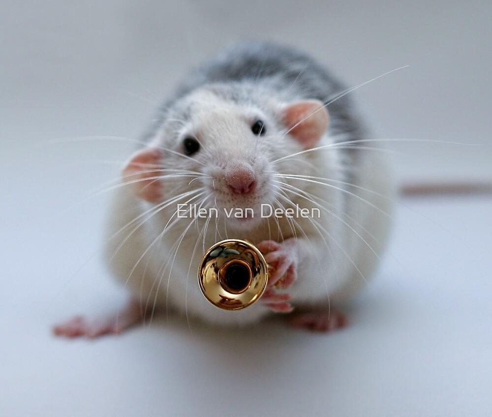 The trumpet by Ellen van Deelen