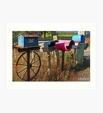 Country Mailboxes - North East Tasmania Art Print