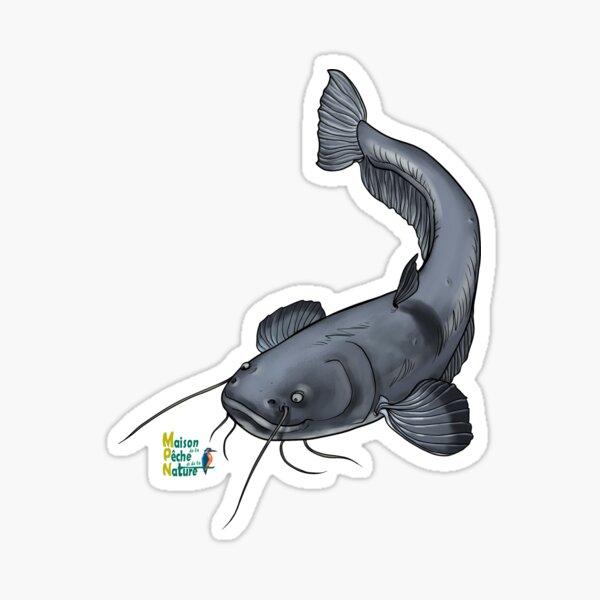 Silure catfish Sticker