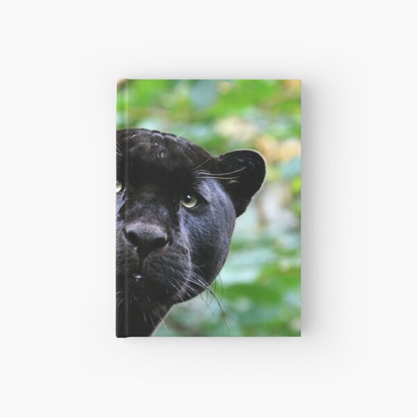 Black Jag Hardcover Journal