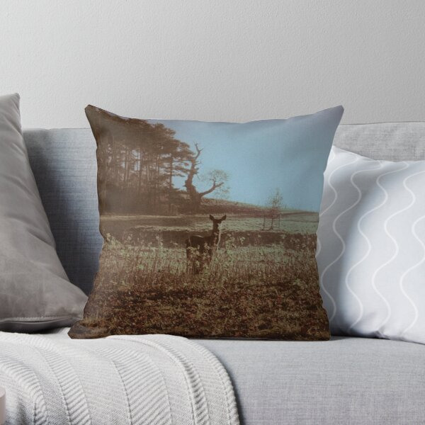 After The Cold Of The Silver Night Throw Pillow