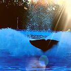 Mr. Orca Showing off♡ by Princess1222