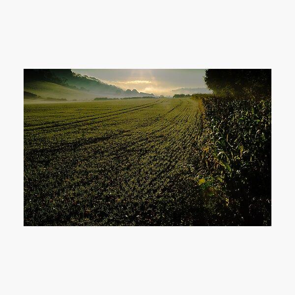 Chilterns fields in autumn  Photographic Print