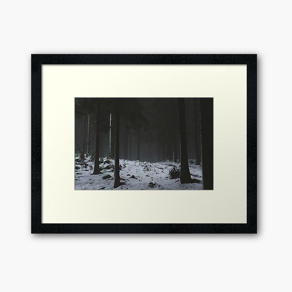 The Whispering Forest Framed Art Print