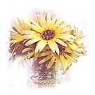 Spring Daisies by Barb Leopold