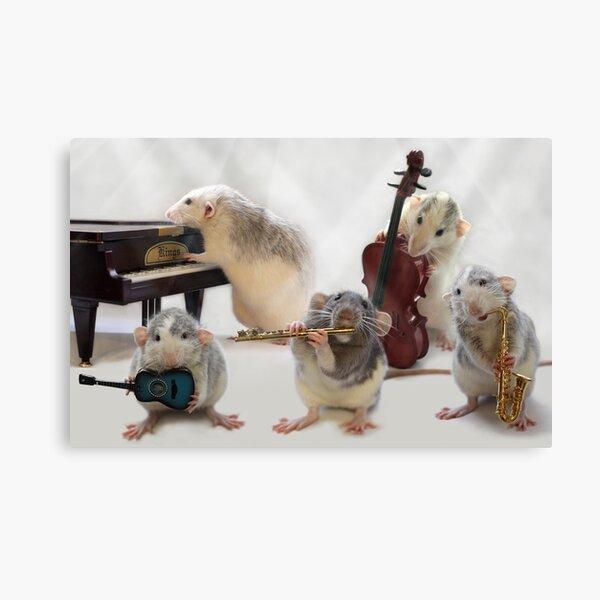 The Quintet Canvas Print
