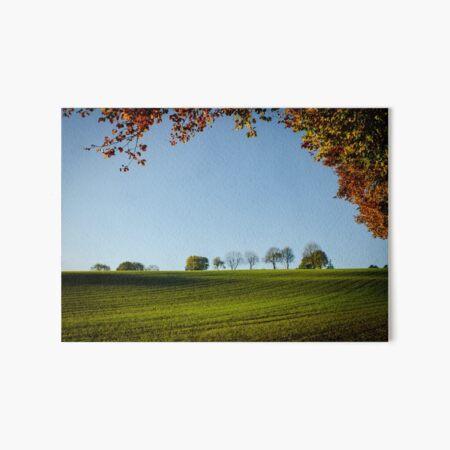 Autumn in the Chilterns Art Board Print