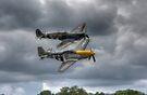 Frankie and Spitfire by Nigel Bangert