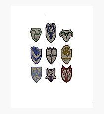 Skyrim Hold Logos Photographic Print