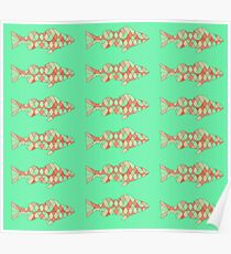 Fish (Red Green) Poster