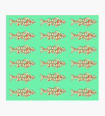 Fish (Red Green) Photographic Print